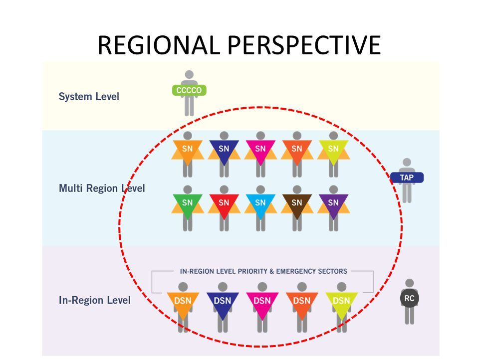 REGIONAL PERSPECTIVE