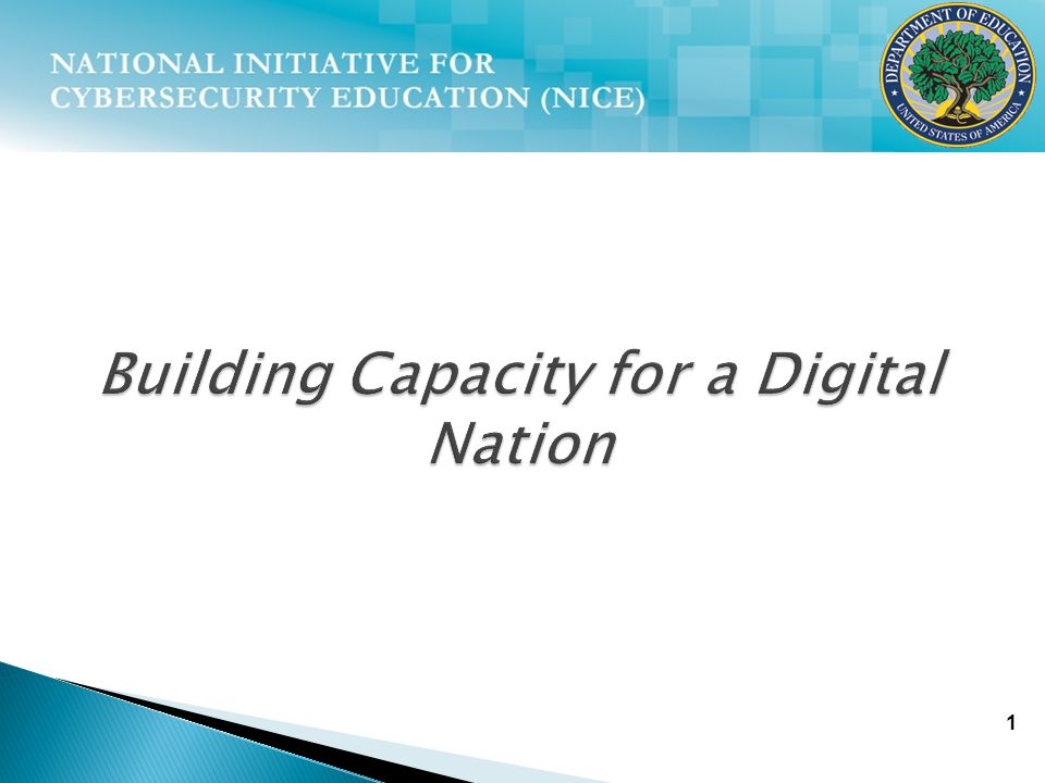 1 Building Capacity for a Digital Nation