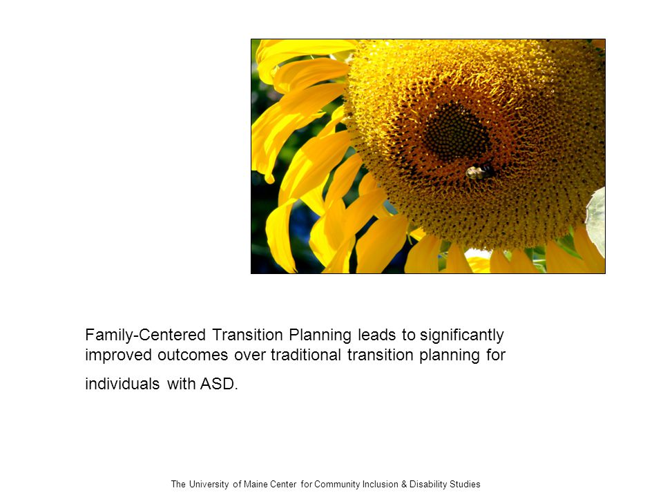 The University of Maine Center for Community Inclusion & Disability Studies Family-Centered Transition Planning leads to significantly improved outcomes over traditional transition planning for individuals with ASD.