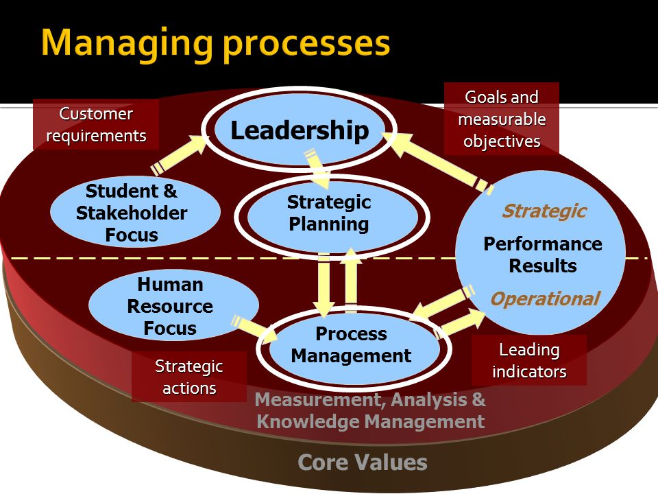 Core Values Measurement, Analysis & Knowledge Management Leadership Student & Stakeholder Focus Strategic Planning Human Resource Focus Process Management Strategic Performance ResultsOperational Goals and measurable objectives Customer requirements Strategic actions Leading indicators