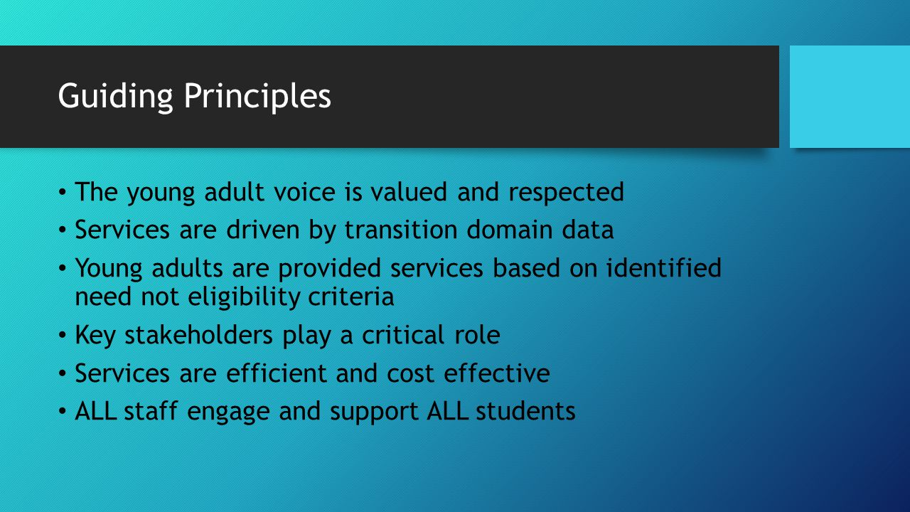 Guiding Principles The young adult voice is valued and respected Services are driven by transition domain data Young adults are provided services based on identified need not eligibility criteria Key stakeholders play a critical role Services are efficient and cost effective ALL staff engage and support ALL students