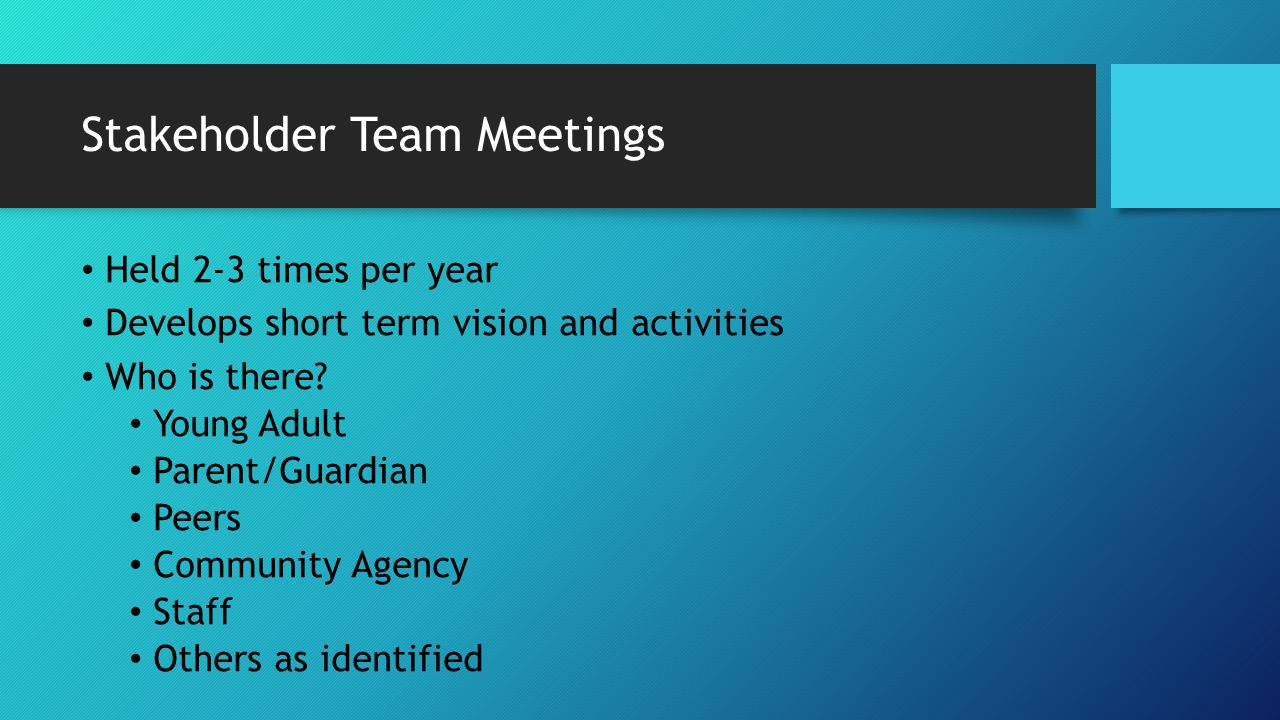 Stakeholder Team Meetings Held 2-3 times per year Develops short term vision and activities Who is there? Young Adult Parent/Guardian Peers Community