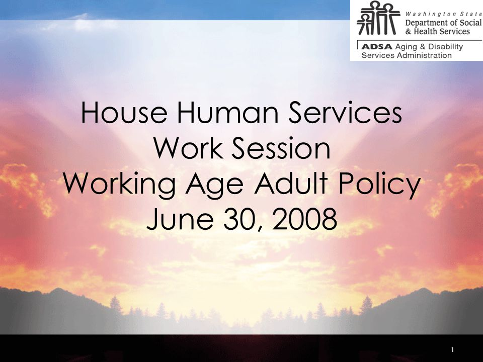 1 House Human Services Work Session Working Age Adult Policy June 30, 2008
