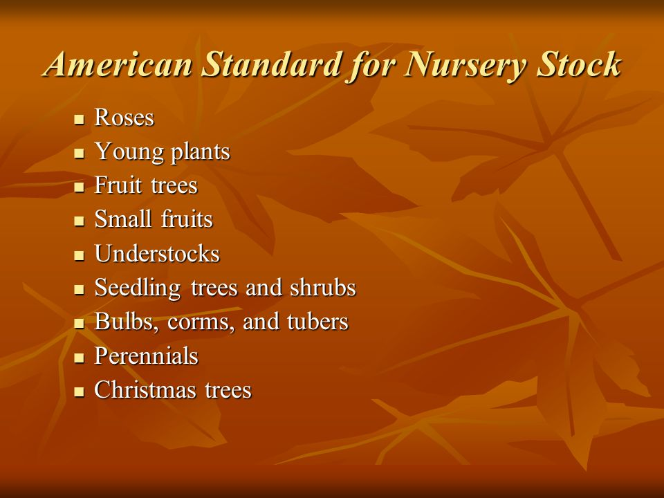 American Standard for Nursery Stock Roses Roses Young plants Young plants Fruit trees Fruit trees Small fruits Small fruits Understocks Understocks Seedling trees and shrubs Seedling trees and shrubs Bulbs, corms, and tubers Bulbs, corms, and tubers Perennials Perennials Christmas trees Christmas trees