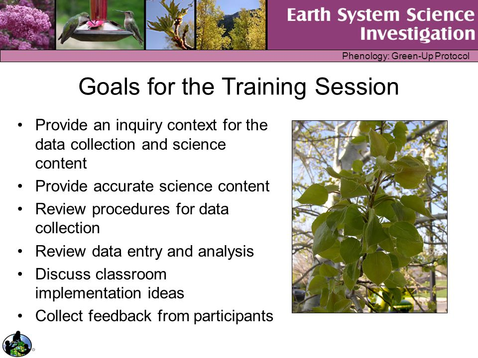 Phenology: Green-Up Protocol Goals for the Training Session Provide an inquiry context for the data collection and science content Provide accurate sc