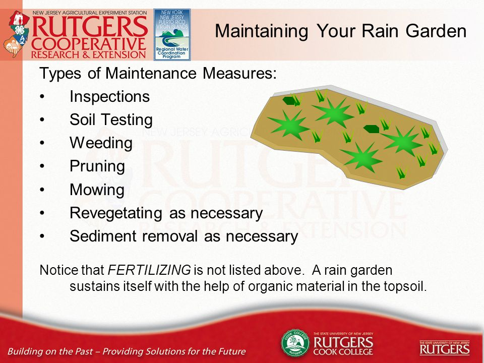 Maintaining Your Rain Garden Types of Maintenance Measures: Inspections Soil Testing Weeding Pruning Mowing Revegetating as necessary Sediment removal as necessary Notice that FERTILIZING is not listed above.