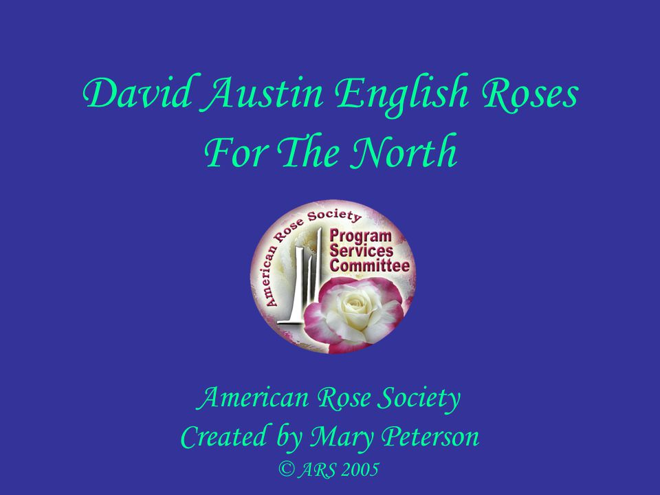 David Austin English Roses For The North American Rose Society Created by Mary Peterson © ARS 2005