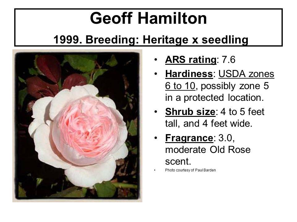 Geoff Hamilton 1999.