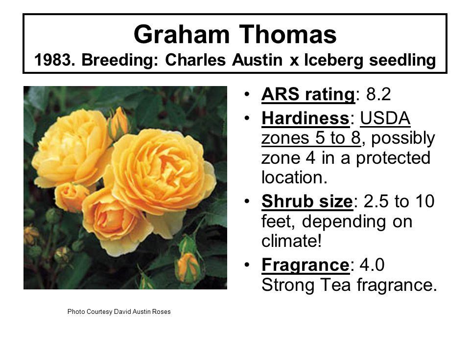 Graham Thomas 1983.