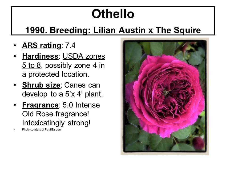 Othello 1990.