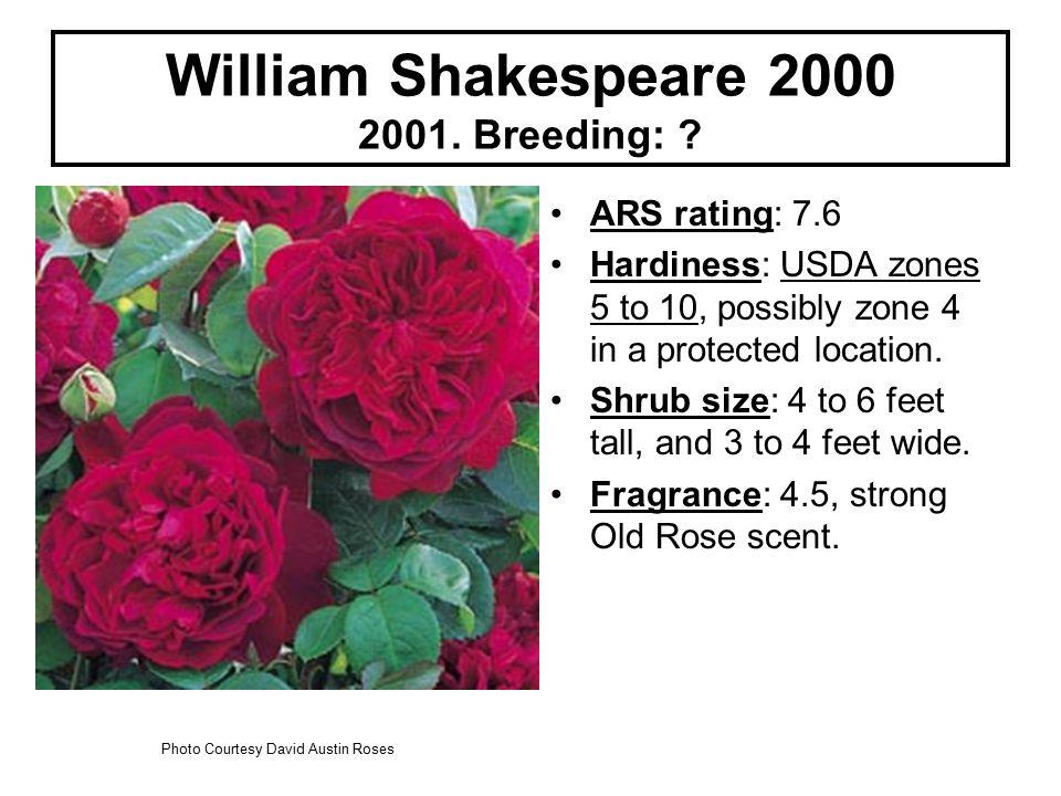 William Shakespeare 2000 2001. Breeding: .