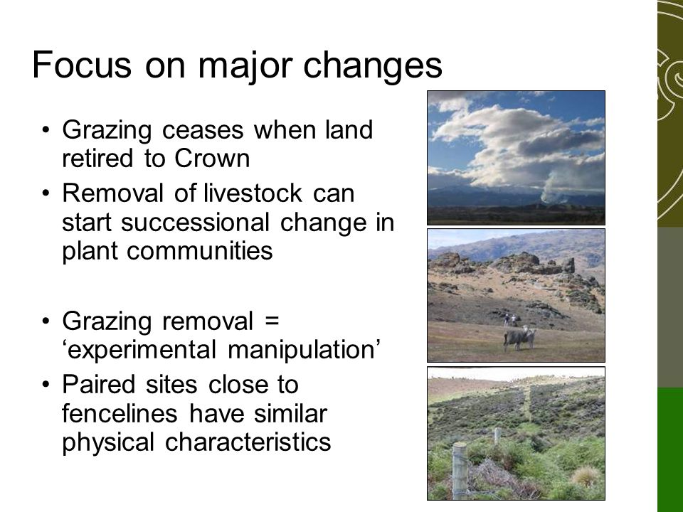 Focus on major changes Grazing ceases when land retired to Crown Removal of livestock can start successional change in plant communities Grazing removal = 'experimental manipulation' Paired sites close to fencelines have similar physical characteristics