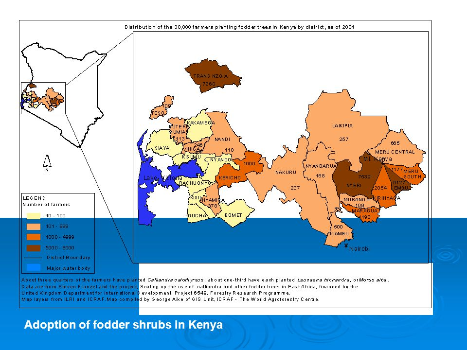 Adoption of fodder shrubs in Kenya