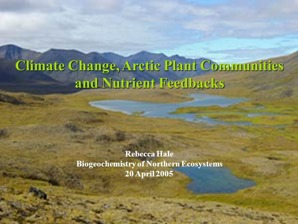 A glimpse of things to come… Global warming (!) has a disproportionate effect on Arctic ecosystems Global warming (!) has a disproportionate effect on Arctic ecosystems Effects of climate change on tundra ecosystems.