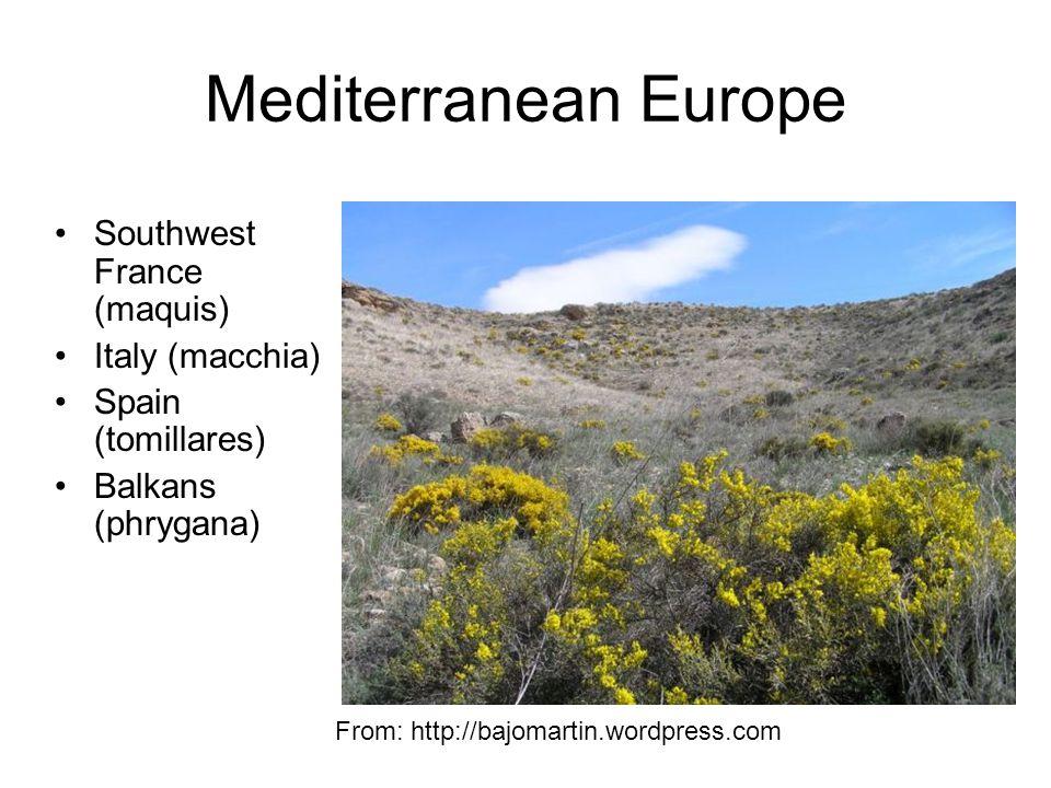 Mediterranean Europe Southwest France (maquis) Italy (macchia) Spain (tomillares) Balkans (phrygana) From: http://bajomartin.wordpress.com