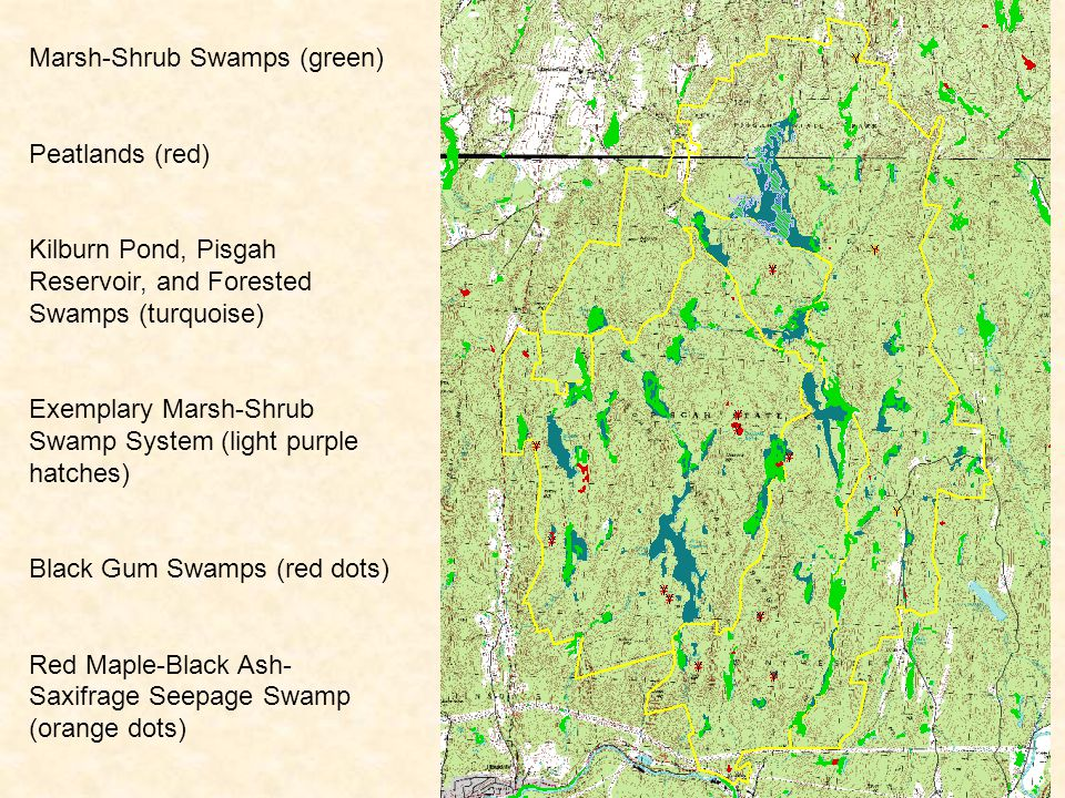 Marsh-Shrub Swamps (green) Peatlands (red) Kilburn Pond, Pisgah Reservoir, and Forested Swamps (turquoise) Exemplary Marsh-Shrub Swamp System (light purple hatches) Black Gum Swamps (red dots) Red Maple-Black Ash- Saxifrage Seepage Swamp (orange dots)