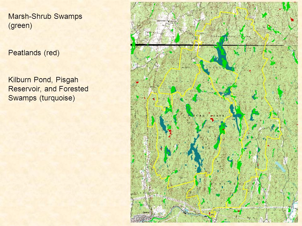 Marsh-Shrub Swamps (green) Peatlands (red) Kilburn Pond, Pisgah Reservoir, and Forested Swamps (turquoise) Exemplary Marsh-Shrub Swamp System (light purple hatches)