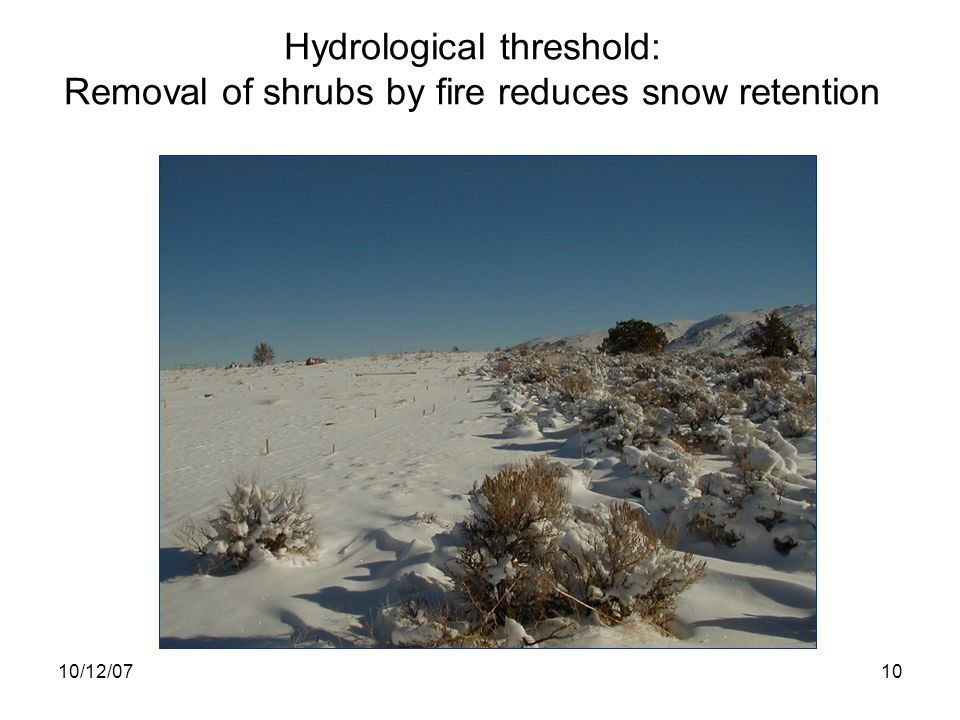 10/12/0710 Hydrological threshold: Removal of shrubs by fire reduces snow retention