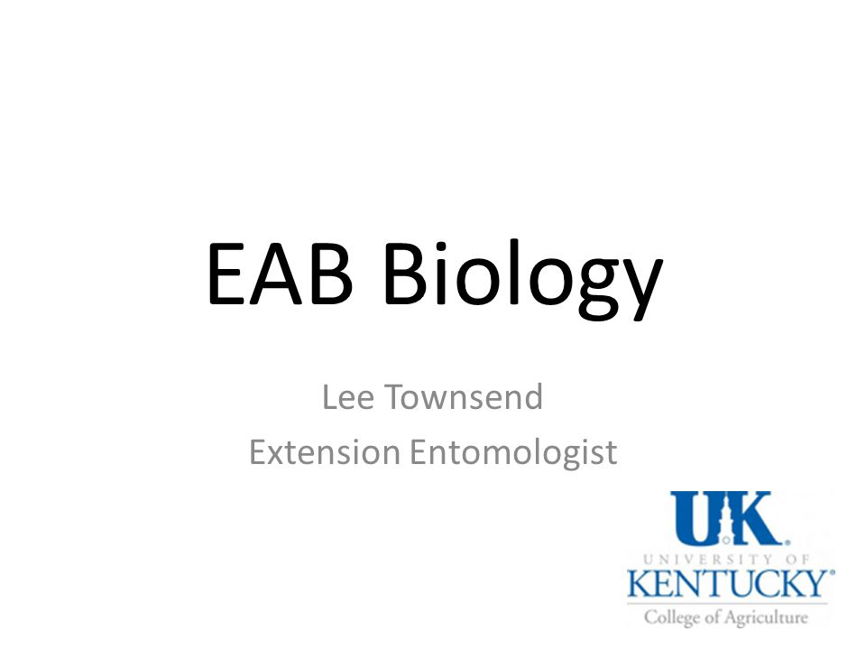 EAB Biology Lee Townsend Extension Entomologist