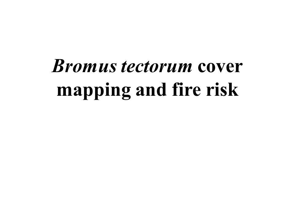 Bromus tectorum cover mapping and fire risk