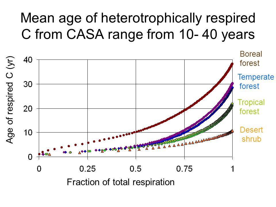 Age of respired C (yr) Fraction of total respiration Tropical forest Desert shrub Temperate forest Boreal forest Mean age of heterotrophically respired C from CASA range from 10- 40 years