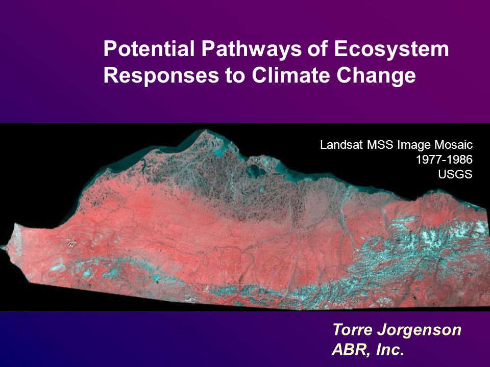 Potential Pathways of Ecosystem Responses to Climate Change Landsat MSS Image Mosaic 1977-1986 USGS Torre Jorgenson ABR, Inc.
