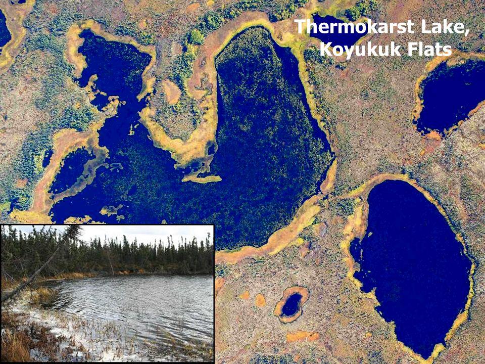Thermokarst Lake, Koyukuk Flats