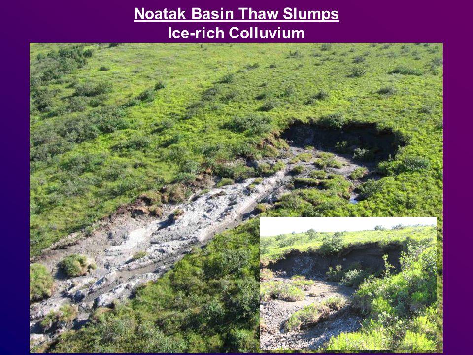 Noatak Basin Thaw Slumps Ice-rich Colluvium