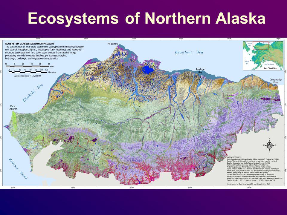 Ecosystems of Northern Alaska
