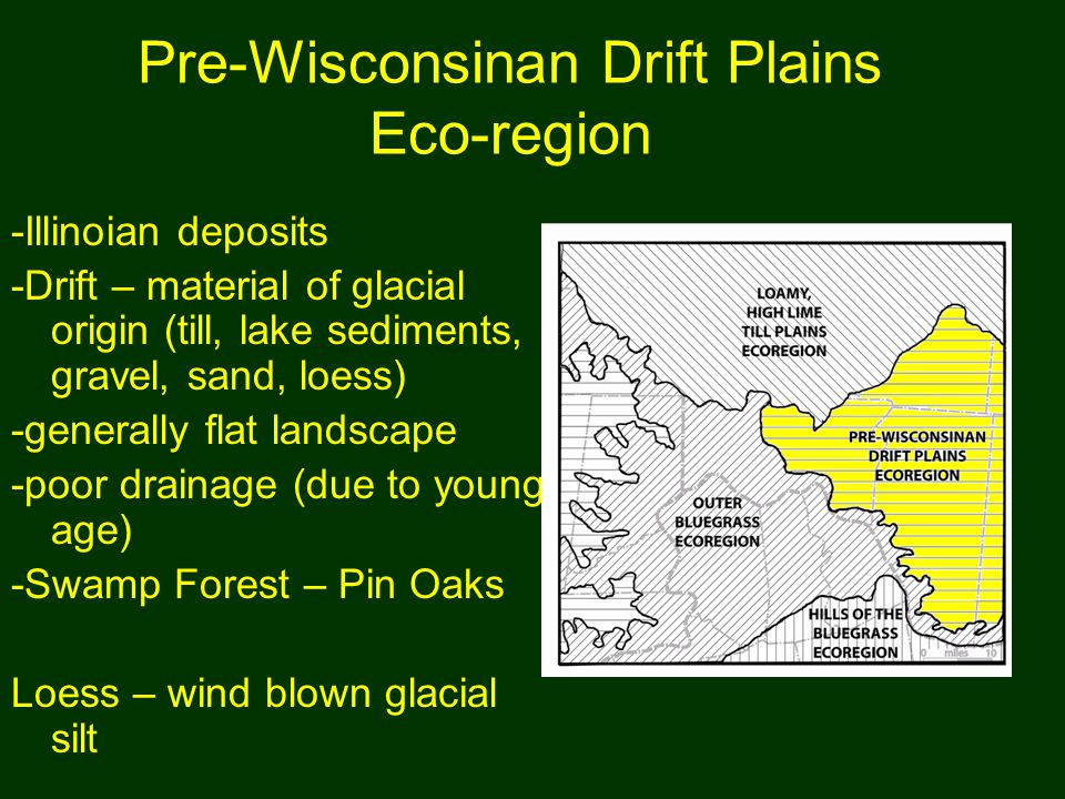 Pre-Wisconsinan Drift Plains Eco-region -Illinoian deposits -Drift – material of glacial origin (till, lake sediments, gravel, sand, loess) -generally flat landscape -poor drainage (due to young age) -Swamp Forest – Pin Oaks Loess – wind blown glacial silt