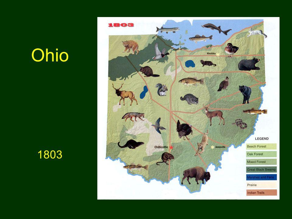 Ohio 1803