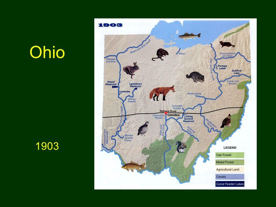 Ohio 1903