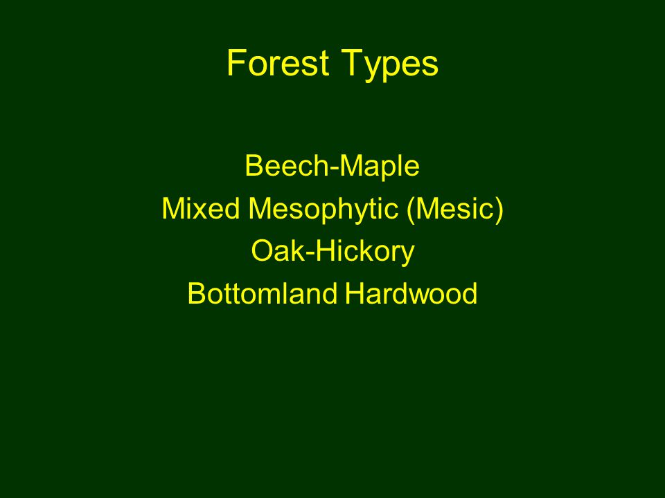 Forest Types Beech-Maple Mixed Mesophytic (Mesic) Oak-Hickory Bottomland Hardwood