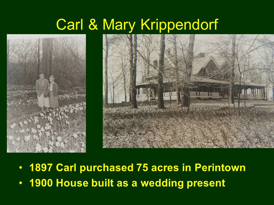 Carl & Mary Krippendorf 1897 Carl purchased 75 acres in Perintown 1900 House built as a wedding present