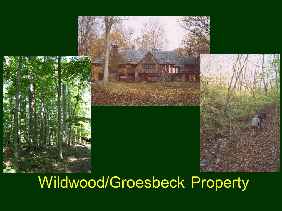 Wildwood/Groesbeck Property