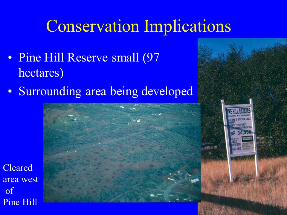 Conservation Implications Pine Hill Reserve small (97 hectares) Surrounding area being developed Cleared area west of Pine Hill