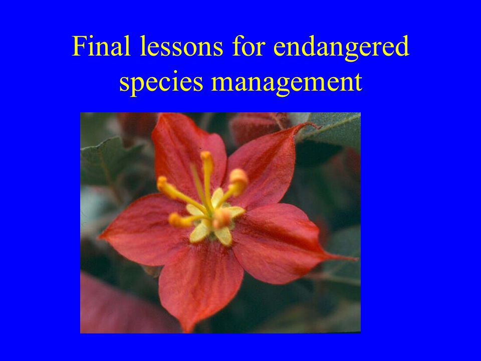 Final lessons for endangered species management