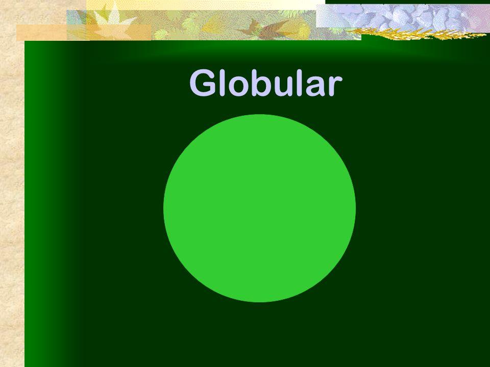 Globular