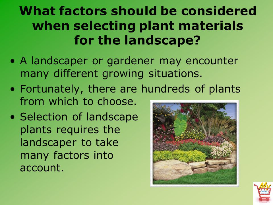 What factors should be considered when selecting plant materials for the landscape? A landscaper or gardener may encounter many different growing situ