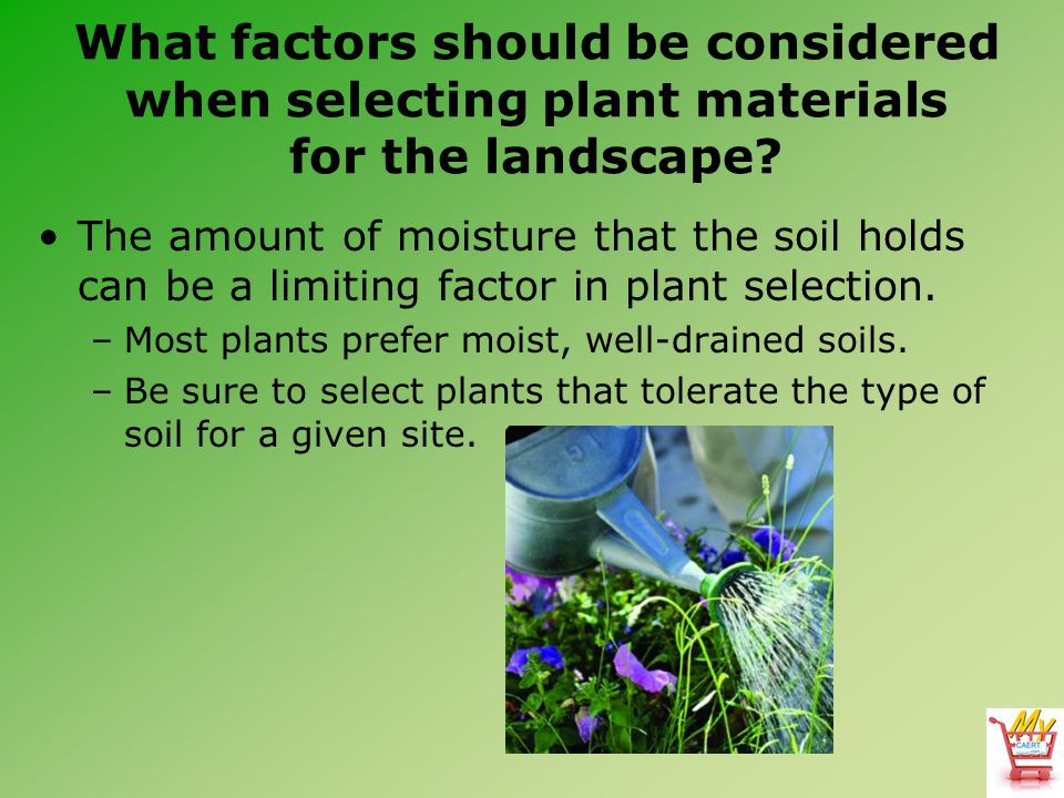 What factors should be considered when selecting plant materials for the landscape? The amount of moisture that the soil holds can be a limiting facto