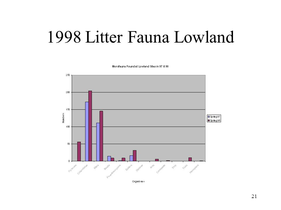 20 1998 Litter Fauna Upland