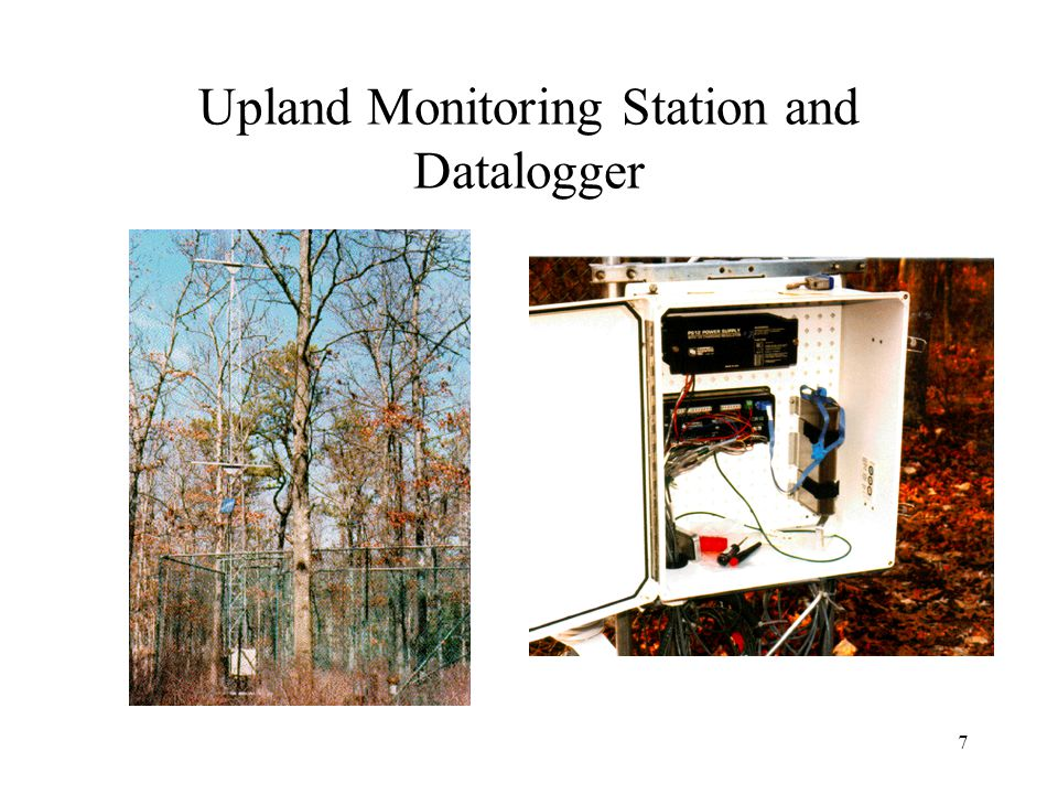 6 Monitoring Station Plan Not shown are soil moisture and soil temperature sensors placed with litter bags at two sites for each station
