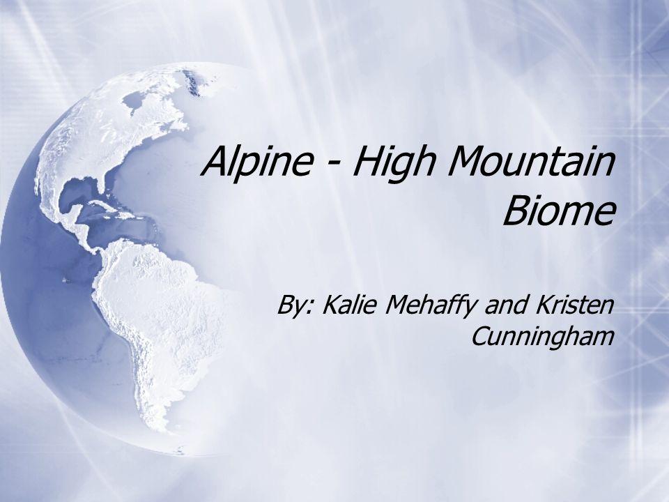 Alpine - High Mountain Biome By: Kalie Mehaffy and Kristen Cunningham
