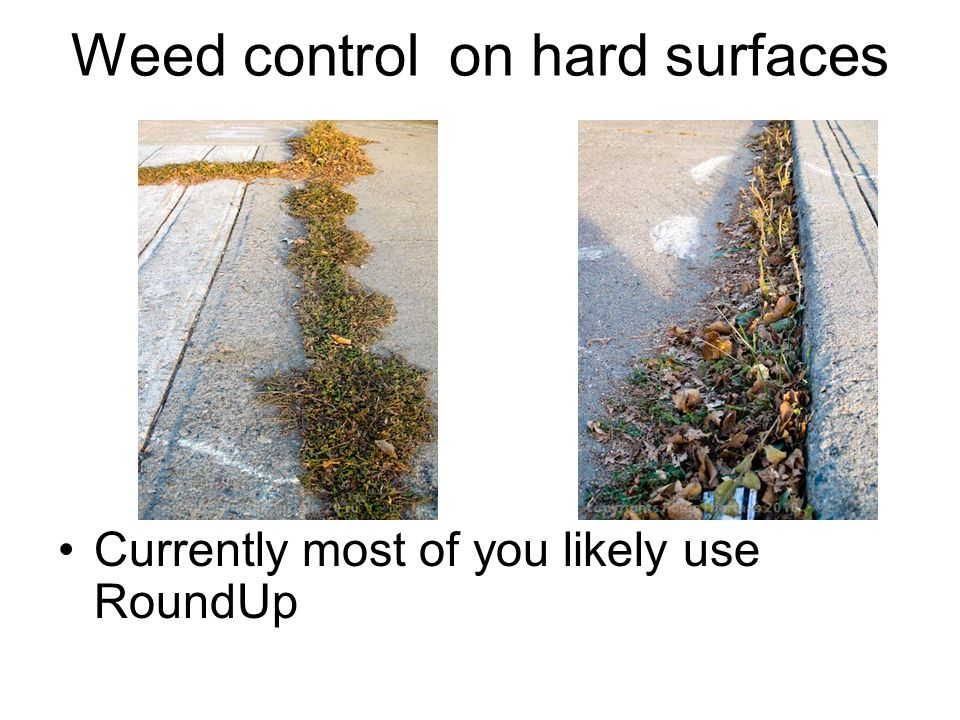 Weed control on hard surfaces Currently most of you likely use RoundUp