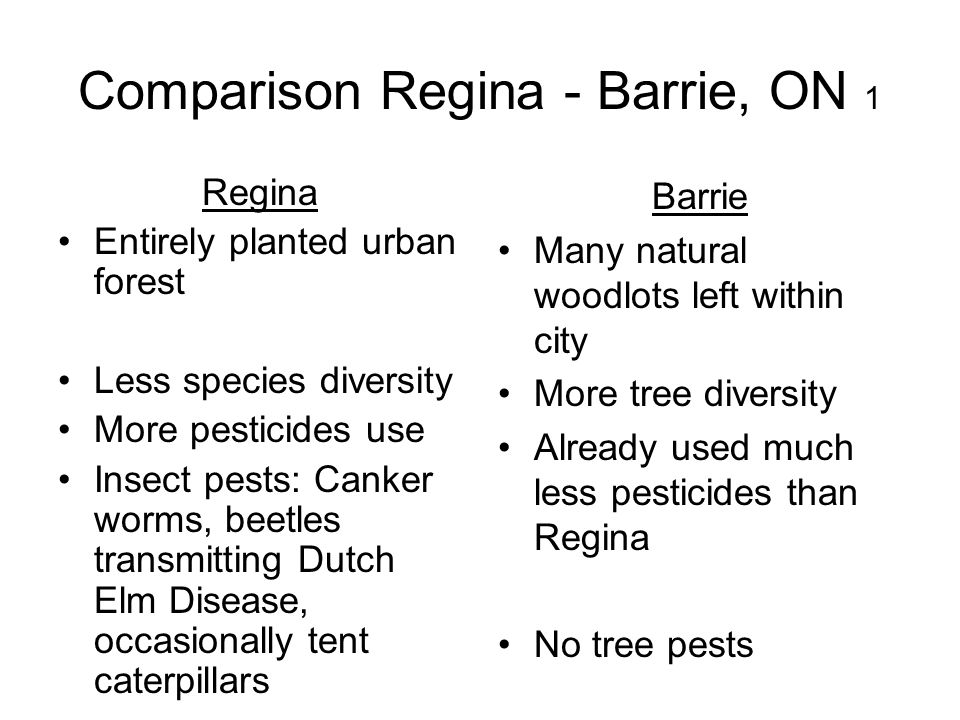 Comparison Regina - Barrie, ON 1 Regina Entirely planted urban forest Less species diversity More pesticides use Insect pests: Canker worms, beetles t