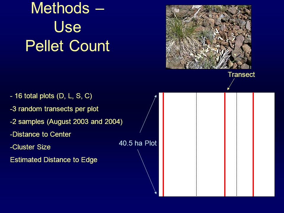 Methods – Use Pellet Count 40.5 ha Plot Transect - 16 total plots (D, L, S, C) -3 random transects per plot -2 samples (August 2003 and 2004) -Distance to Center -Cluster Size Estimated Distance to Edge