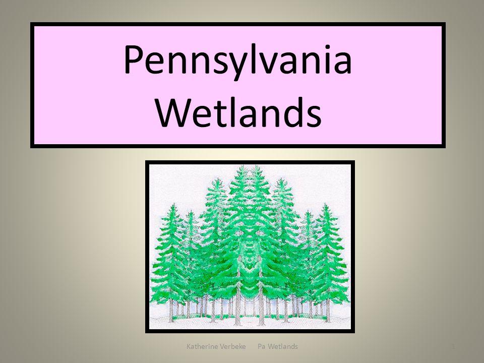 Katherine Verbeke Pa Wetlands1 Pennsylvania Wetlands