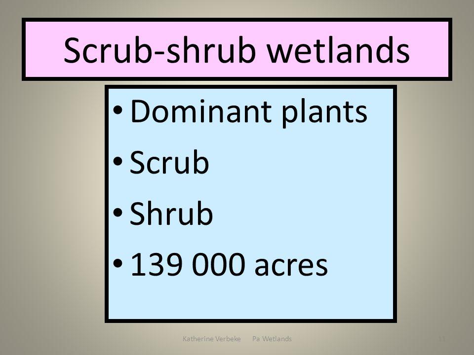 Katherine Verbeke Pa Wetlands11 Scrub-shrub wetlands Dominant plants Scrub Shrub 139 000 acres