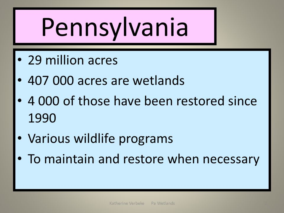 Katherine Verbeke Pa Wetlands2 Pennsylvania 29 million acres 407 000 acres are wetlands 4 000 of those have been restored since 1990 Various wildlife programs To maintain and restore when necessary