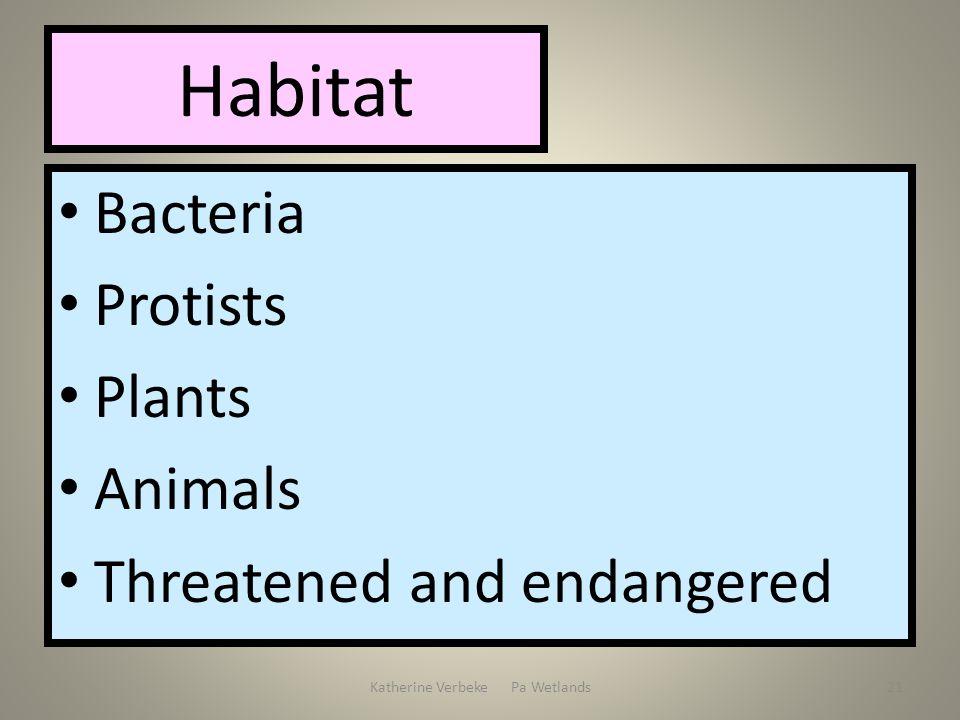 Katherine Verbeke Pa Wetlands21 Habitat Bacteria Protists Plants Animals Threatened and endangered